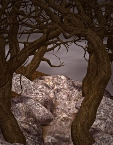 Widow's Woods: Stairs Image