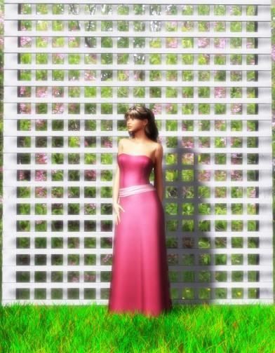 Wedding Belles: Joy for V4