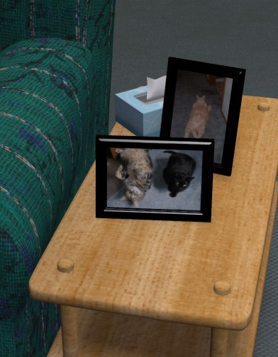 Small Picture Frame Image