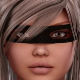 Bandit Mask for V4 Image