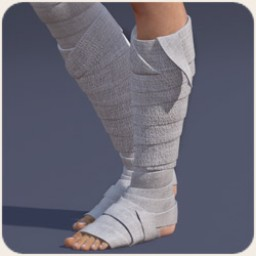 Shin Bandages for Dawn Image