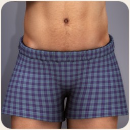 Boxer Shorts Plaid Image