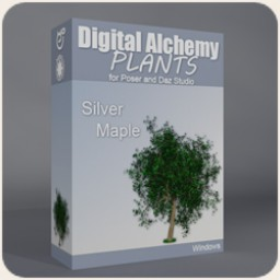 Digital Alchemy: Silver Maple
