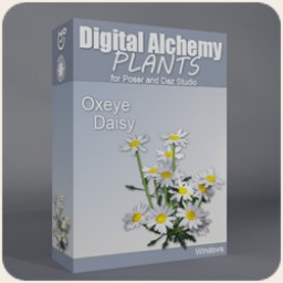 Digital Alchemy:  Oxeye Daisies