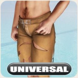 Universal Shipwrecked Board Shorts Image