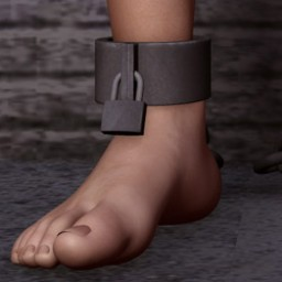 Ankle Shackles for M4 Image