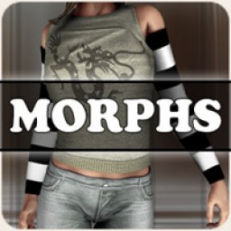 Morphs for V4 Sleeves Image