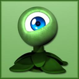 Baby Eye Flower