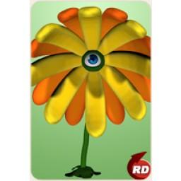 Adult Eye Flower Petals