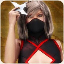 Ninja Weapons Image