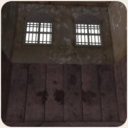 The Asylum: Padded Room Image