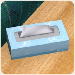 Tissue Box Image