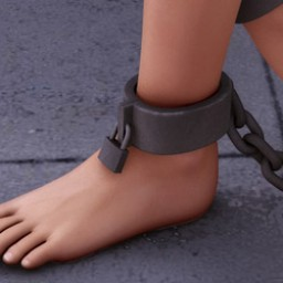 Ankle Shackles for V4 Image