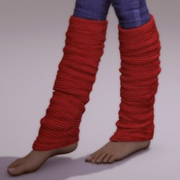 Leg Warmers for V4 image