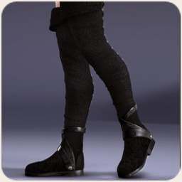 Thigh High Boots for V4 Image