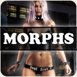 Morphs for V4 Vixen Shirt Image